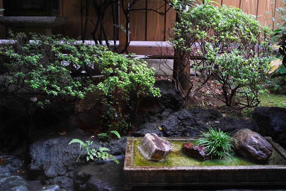 ムシ暑い日には、お蕎麦 ~松戸・関やど~_c0223825_08197.jpg
