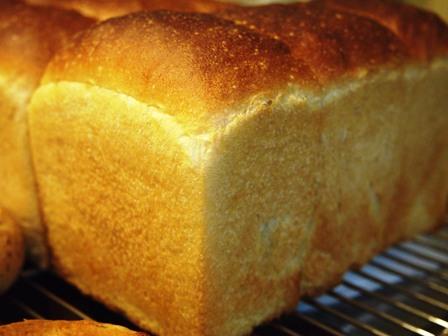 ホシノで乳製品なしパンとバタートップと_e0167593_034053.jpg