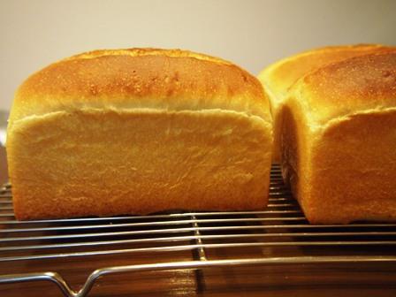 ホシノで乳製品なしパンとバタートップと_e0167593_044356.jpg