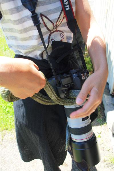 ヘビ臭い_e0235910_7131229.jpg