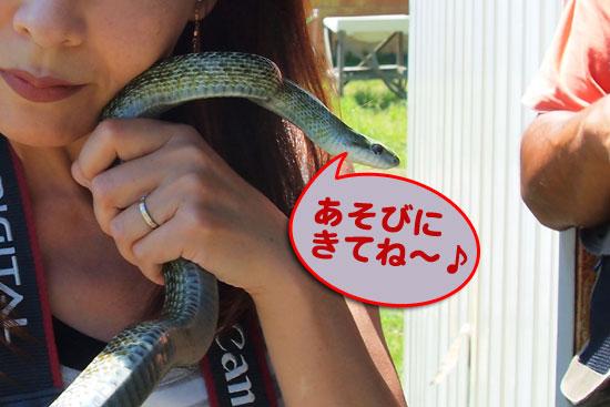 ヘビ臭い_e0235910_719562.jpg