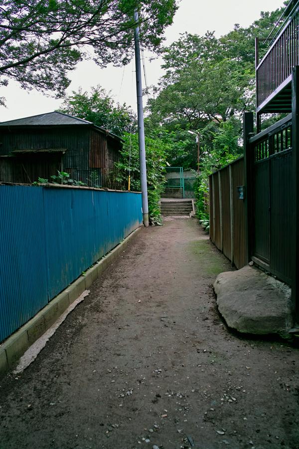 DP1x 夏のスナップ特集(1) 松戸ワンダーランド_c0223825_6554666.jpg