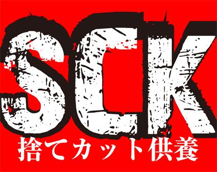 SCK 2011 SUMMER_f0203027_1123369.jpg