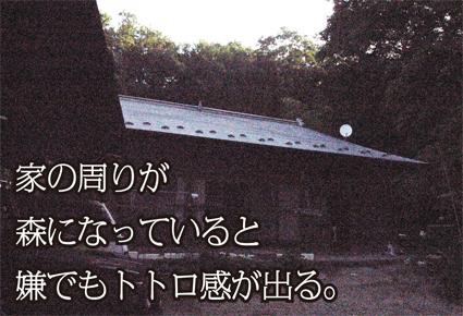 f0203027_18504370.jpg