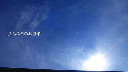 b0168832_0101950.jpg