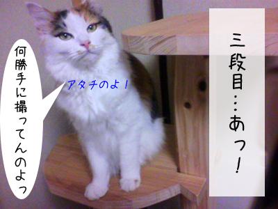 f0008935_118233.jpg