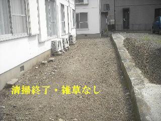 f0031037_2040571.jpg
