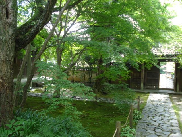 夏の京都2011 ~煩悩寺の変~_c0220838_91704.jpg
