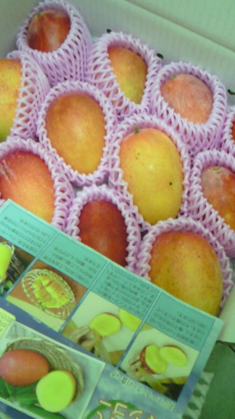 徳之島からの贈り物_f0221271_18185921.jpg
