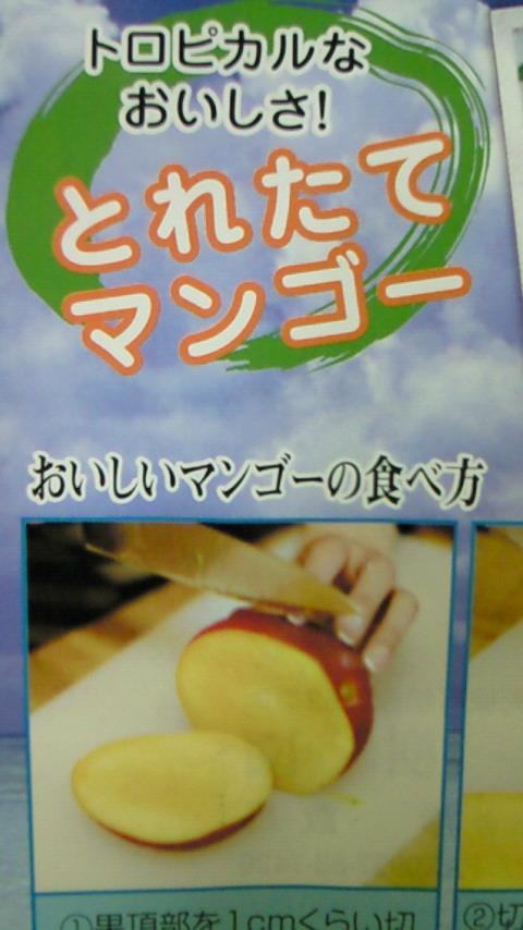 徳之島からの贈り物_f0221271_18185966.jpg