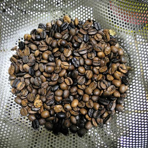 自家焙煎コーヒー_f0099102_013199.jpg
