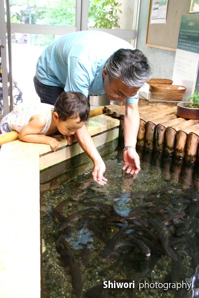 甥っ子☆夏の井の頭公園_d0170980_1710496.jpg