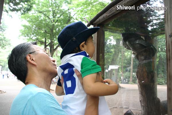 甥っ子☆夏の井の頭公園_d0170980_1741051.jpg