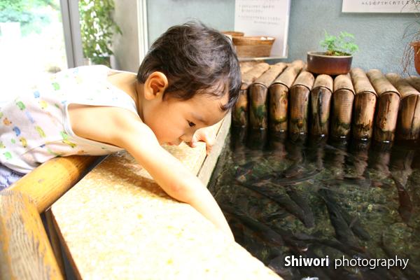 甥っ子☆夏の井の頭公園_d0170980_1762136.jpg