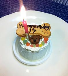 Bon anniversaire _f0009782_2312287.jpg
