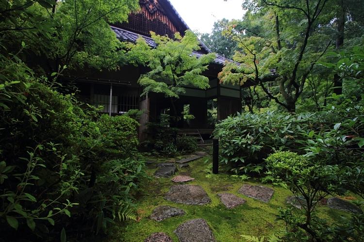 高桐院(大徳寺塔頭)_e0051888_2214250.jpg