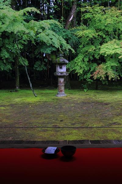高桐院(大徳寺塔頭)_e0051888_22145346.jpg