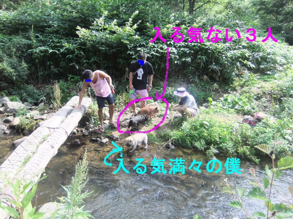 f0063791_1435691.jpg