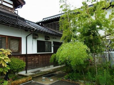 家庭菜園&竹やぶのお蕎麦_e0139694_20243948.jpg