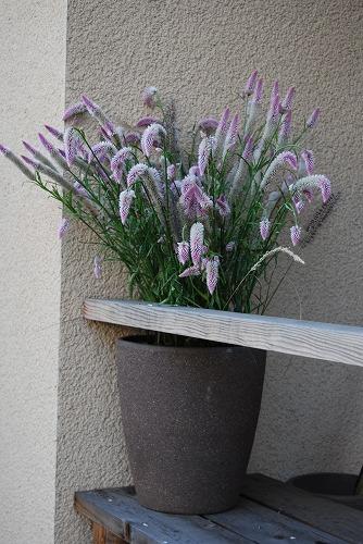 花のしつらえ : 秋冬編_c0124100_14365091.jpg