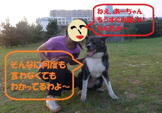 f0121712_1655344.jpg