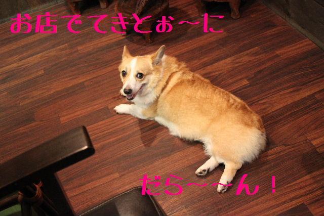 b0130018_1001633.jpg
