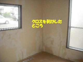 f0031037_20482614.jpg