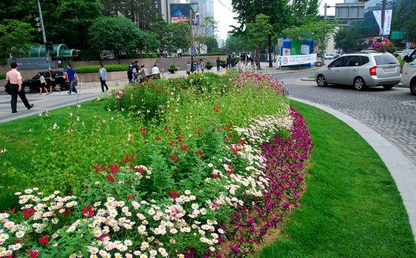 ソウル・清渓川にて_e0098241_1553264.jpg