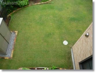 芝生・・・ヘアグラじゃないよ。_e0139056_10192810.jpg