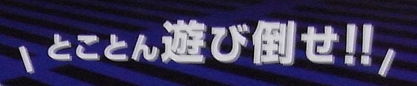 【レビュー】バッファローコクヨサプライ Arcade Stick 13 II(BSGPAC02BK)_c0004568_20183667.png