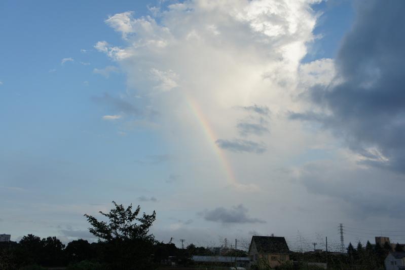 虹架かる夕空  2011.8.24_e0223771_10295377.jpg
