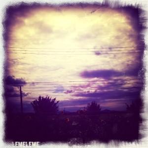 MY PHOTO_e0062921_19131031.jpg