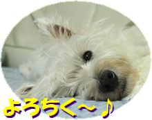 f0084422_005660.jpg