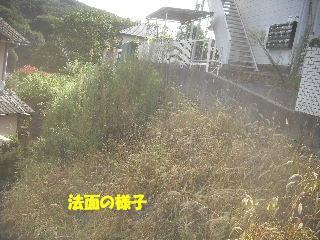 f0031037_20165343.jpg