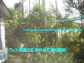 f0031037_20201621.jpg