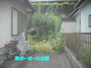 f0031037_20322449.jpg