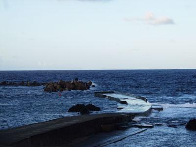 Divehouse Kanaloa  八丈島 ダイビングログ_b0189640_2382179.jpg