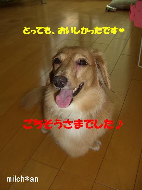 b0115642_22134650.jpg