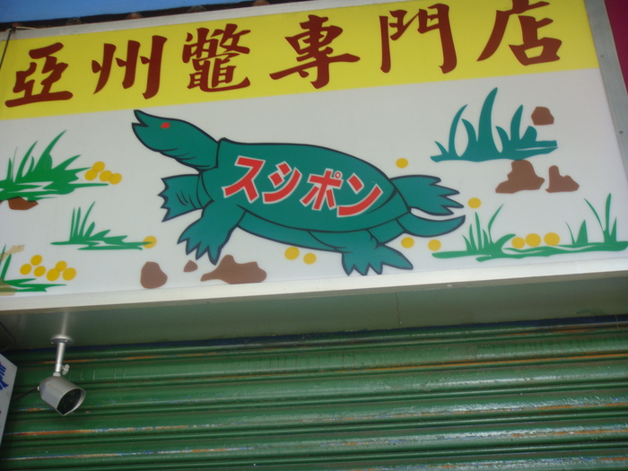KAZ TAP SOLO。村田台湾一人旅。_f0137346_2531059.jpg