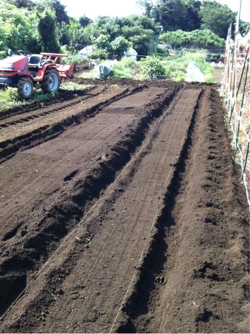 カーヴォロネーロの畝作り~播種~ネット張りまでいっきに!_c0222448_15491920.jpg