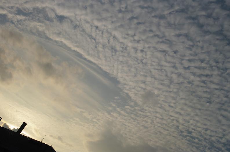 中之島スナップ ~前編~_f0152550_20502966.jpg