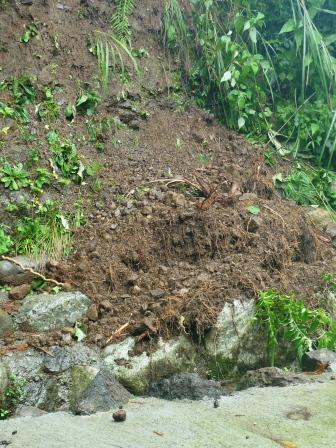 裏庭の土砂崩れ。_f0177373_1191917.jpg