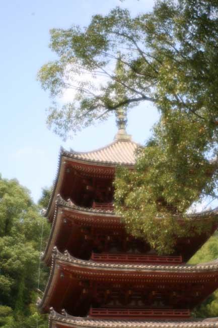 明王院五重塔
