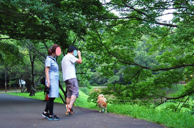 かぼちゃんに会いに_a0126590_1102846.jpg