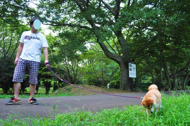 かぼちゃんに会いに_a0126590_1123945.jpg
