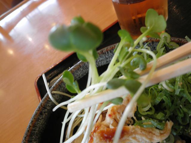 讃岐製麺      箕面半町店_c0118393_7333229.jpg
