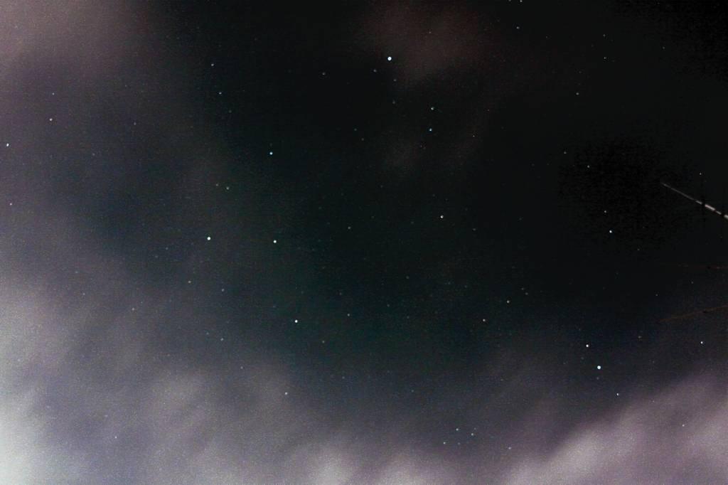 蓮カワセミ/名残の「夏の大三角形」_b0024798_9305120.jpg