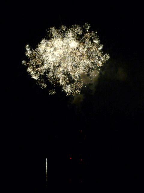 隅田川花火大会2011最高_f0180307_13152096.jpg