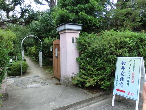 学校前神社の公園さくら満開_b0159908_14102644.jpg