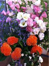 今週のお花_a0200423_19181069.jpg